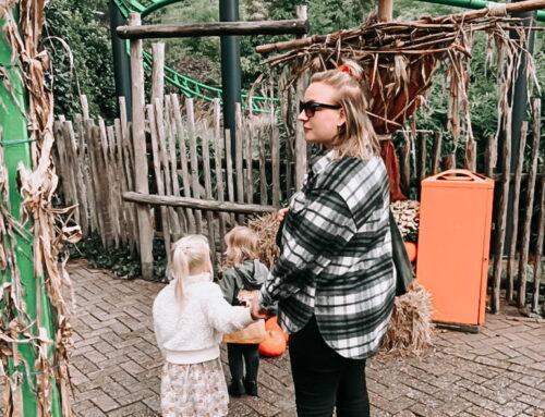 Avonturenpark Hellendoorn met kleine kinderen: yay of nee?