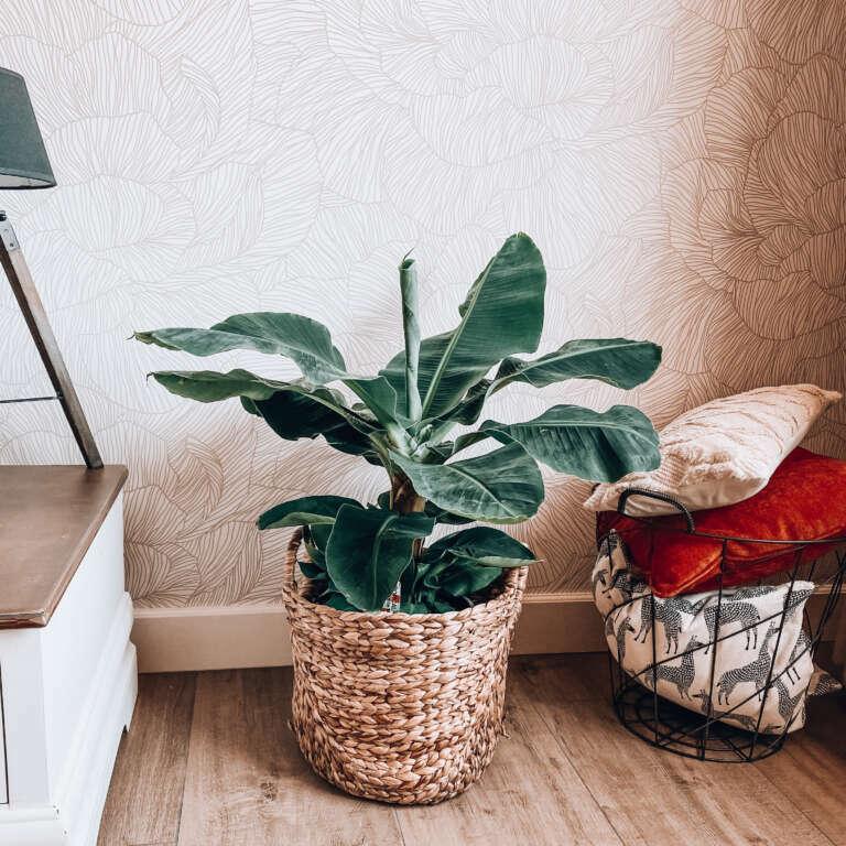Interieur Nieuw behang in de woonkamer! - Mama's Meisje blog