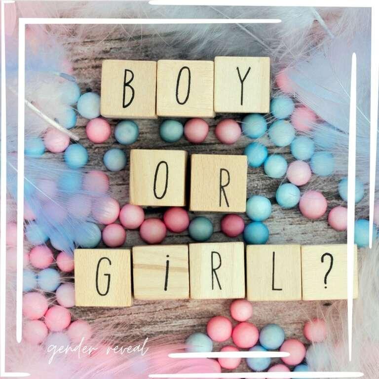 Gender Reveal vierde kindje - Mama's Meisje blog